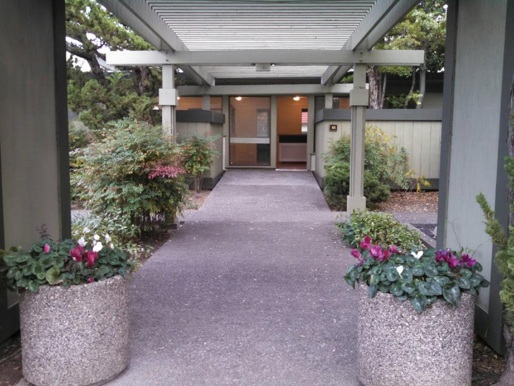 Santa Rosa Chiropractor   New Patients